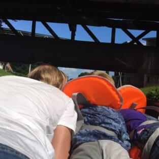 Bukken bij de brug ad Eibergseweg Welgelegen Groenlo